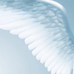 Angeli guaritori 1