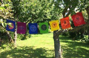 Energia pranica, corso professionale: Allineamento Pranico dei Chakra